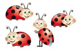 Het insect van de dame Stock Illustratie