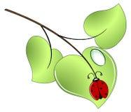Het insect van de dame op een groen blad Vector Illustratie