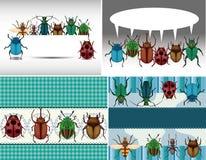 Het insectenkaart van het beeldverhaal Stock Foto's
