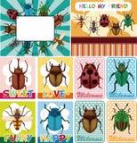 Het insectenkaart van het beeldverhaal Royalty-vrije Stock Foto's