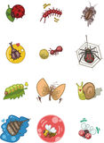 Het insectenpictogram van het beeldverhaal Royalty-vrije Stock Afbeeldingen