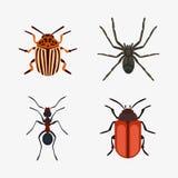 Het insectpictogram isoleerde de kevermier van aard vlak vliegend insecten en de sprinkhaan van de het wildspin of mugkakkerlakke Stock Afbeeldingen