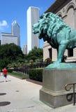 Het Instituut van de Kunst van Chicago stock foto's