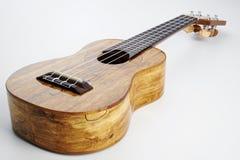 Het instrument van de muziek Stock Fotografie