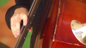 Het instrument van het muziekoverleg stock video