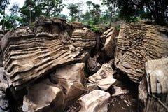Het interessante rotsenpark met bruine kleur maakt mooi steenpark royalty-vrije stock foto