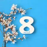 Het internationale concept van de vrouwendag Kersenboom en datum Royalty-vrije Stock Foto's