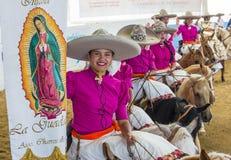 Het internationale festival van Mariachi & Charros- royalty-vrije stock afbeeldingen