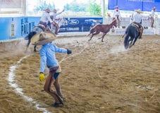 Het internationale festival van Mariachi & Charros- royalty-vrije stock fotografie