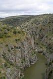 Het internationale Natuurreservaat Douro stock fotografie