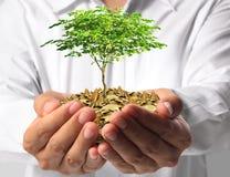 Het investeren aan groene zaken royalty-vrije stock foto