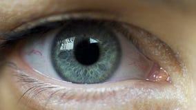 Het irisoog wordt van de van de grotere en lichte voorwaardenverandering, vrees of adrenaline pompen stock footage