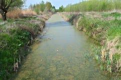 Het irrigatiekanaal werd moeras royalty-vrije stock fotografie