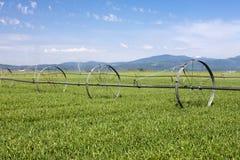 Het irrigeren van het landbouwbedrijfgebied. Royalty-vrije Stock Afbeelding