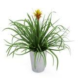 Het isometrische bloem 3D teruggeven stock illustratie