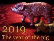 2019 het jaar van het varken stock afbeelding