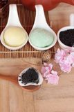Het Japanse dessert van Daifukumochi en hete thee stock foto