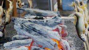 Het Japanse Klusje en Iwana-riviervissen roosteren stock video