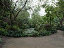 Het Japanse panorama van het tuinlandschap Stock Afbeeldingen