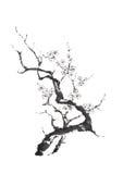 Het Japanse stijl sumi-e het bloeien de inkt van de pruimboom schilderen royalty-vrije stock foto's
