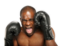 Het jonge Afrikaanse Amerikaanse gillen van de Bokser Royalty-vrije Stock Afbeelding