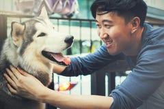 Het jonge Aziatische mannelijke hondeigenaar spelen en wat betreft het gelukkige Husky Siberian-hondhuisdier met liefde en zorg royalty-vrije stock afbeeldingen