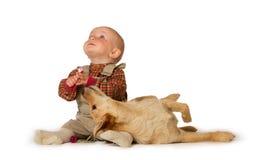Het jonge baby spelen met een hond Royalty-vrije Stock Afbeeldingen