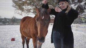 Het jonge blonde vrouw petting ziet en manen van mooi bruin paard bij een boerderij onder ogen De dame stijgt hoed op en zet op h stock video