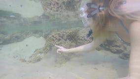 Het jonge blondemeisje in bikini met mooi cijfer snorkelt onderwater in Indische Oceaan in Sri Lanka stock video