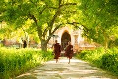 Het jonge Boeddhistische beginnermonniken lopen royalty-vrije stock fotografie
