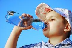 Het jonge geitje drinkt water Royalty-vrije Stock Fotografie