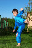 Het jonge geitje van de karate Stock Foto's