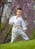 Het jonge geitje van de karate Stock Fotografie