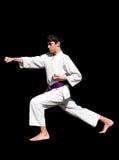 Het jonge geitje van de karate stock afbeelding