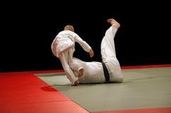 Het jonge geitje van het judo wint Stock Foto's