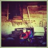 Het jonge geitje van het platteland Stock Fotografie