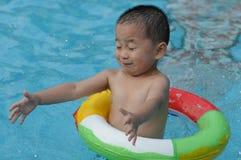 Het jonge geitje zwemt Stock Afbeeldingen