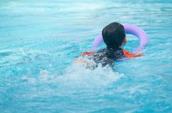 Het jonge geitje zwemt met schuimnoedel voor het leren van zwemmende klasse in water p royalty-vrije stock foto