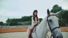 Het jonge gelukkige meisje stelt op een vrij wit paard op het gebied 4K stock footage