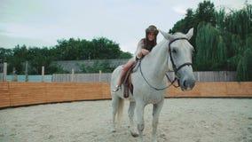 Het jonge gelukkige meisje stelt op vrij wit paard op het gebied 4K stock footage