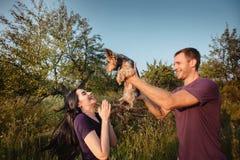 Het jonge gelukkige paar op aard, de jongen geeft meisje een hond - de terriër van Yorkshire als gift Royalty-vrije Stock Afbeelding