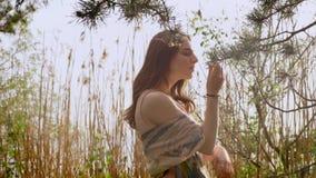 Het jonge gembermeisje in een kleding bevindt zich in bos in aard, raakt een spar, sparren, installaties op achtergrond 50 fps stock footage