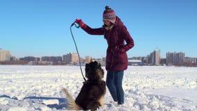 Het jonge hipstervrouw spelen met haar Schor hond op bevroren rivier tegen achtergrond van cityscape stock video