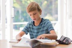 Het jonge jongen bestuderen Royalty-vrije Stock Foto