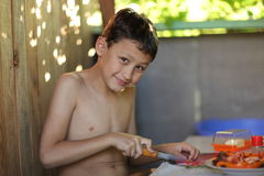 Het jonge jongen koken Stock Fotografie