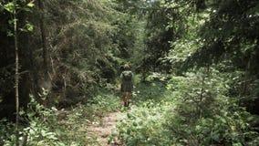 Het jonge meisje loopt in het bergenbos met bakpack - het nationale park van Georgië stock video