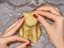 Het jonge meisje ` s overhandigt kokende verjaardagscake in de vorm van een kattenclose-up stock foto