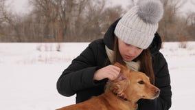 Het jonge meisje streelt en kust haar geliefde hond en glimlacht Meisje het spelen met hond in het de winterpark stock video