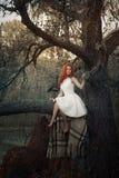 Het jonge meisje zit op een boom in een bos royalty-vrije stock afbeeldingen