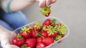 Het jonge meisjes ruwe voedsel toont geselecteerde bessen van organische aardbeien stock footage